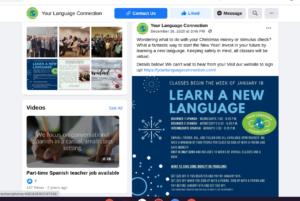 cohesive branded social media ylc